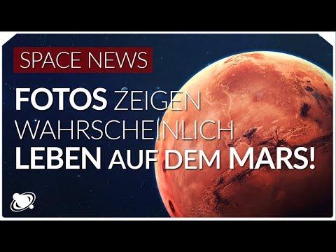 Leben auf dem Mars | Beweis durch diese Fotos?