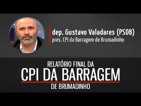 Deputado Gustavo Valadares fala sobre relatório da CPI da Barragem de Brumadinho