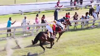 Horse Races Peoples Stadium May 20, 2018 Race  4