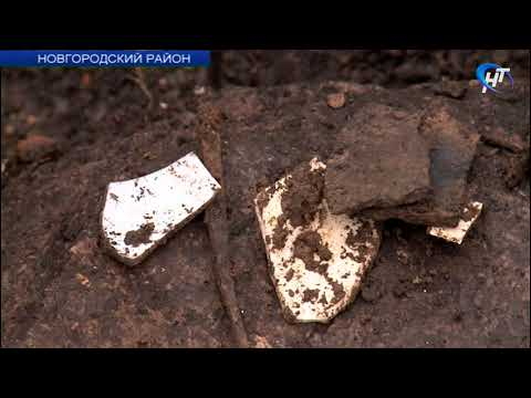 Археологи приступили к очередному этапу исследований усадьбы «Онег»