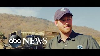 African Parks has released a video and images of Prince Harry's three week stint in Malawi this summer, where he helped with a...
