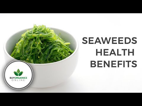 Seaweeds Health Benefits | Buy Organics Online