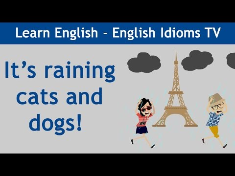 Learn / Teach English Idioms: It's Raining Cats And Dogs!