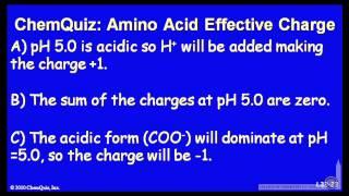 Amino Acid Effective Charge  (Quiz)