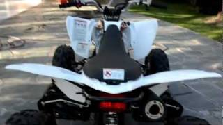 10. Yamaha Raptor 250 2011 walkthrough and start up