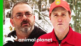 Investigating Illegal Bait For Deer Hunting | North Woods Law by Animal Planet