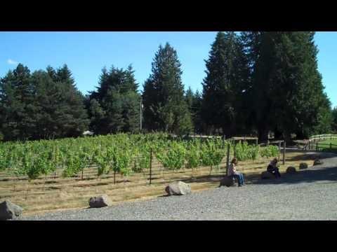 Three Brothers Vineyard & Winery - 3