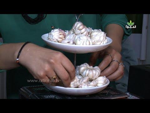 على هامش فعاليات المعرض الوطني للمنتجات المحلية: تجربة رائدة في زراعة وتثمين الثوم الأبيض يقودها طلبة موجزين بمنطقة أساكي بورززات