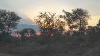 Skukuza South Africa  city pictures gallery : Mfafa Safari #SouthAfrica Skukuza