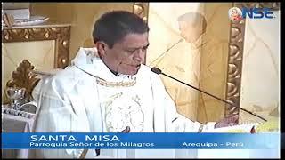 Santa Misa 14-11-2020