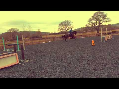Rosie Fry's eventing blog: Winter dressage, all-clear for Kitkat and first falls [VIDEO]
