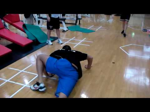 ワニウォークで股関節と肩甲骨の連動性を高めよう!【ウォーミングアップにおすすめ!】