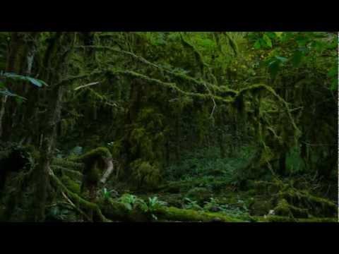 Mountains of Abkhazia - Part VI (видео)