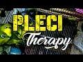 Download Lagu Master Terapi Koloni Pleci, TERBUKTI AMPUH Pancing Burung Bergairah Untuk Ikut Buka Paruh Mp3 Free