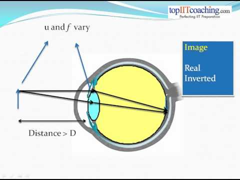 Optical Instruments -- www.topIITcoaching.com