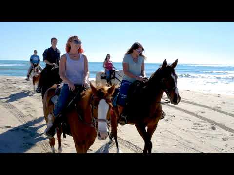 Equine Adventures- Horseback Riding on the Outer Banks