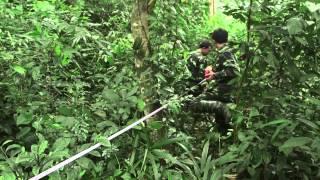 Un Inventaire Forestier National innovateur en cours de développement au Viet Nam