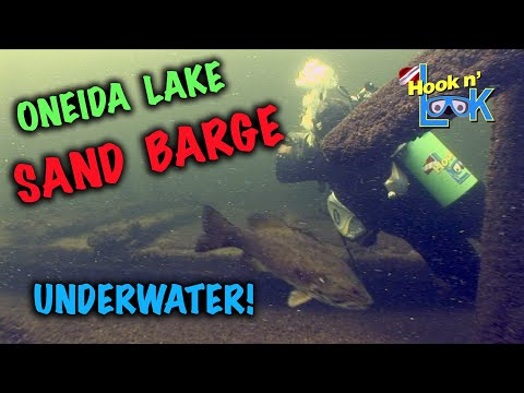 Fishing Oneida Lake's Sand Barge ... from a Fish's Perspective!Fishing Oneida Lake's Sand Barge ... from a Fish's Perspective!<media:title />