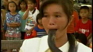 King Cobra Kiss - Girl Puts Snake's Head In Her Mouth