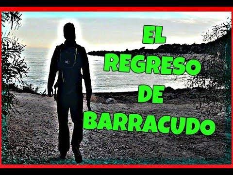 ¡¡EL REGRESO DE BARRACUDO!!