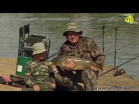 ловля сазана на ахтубе с лодки видео