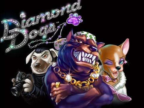 Diamond Dogs Slot - 240x Total Bet!