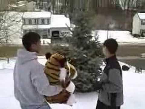 American Politics Fire Department (1st edit) Cat in Tree