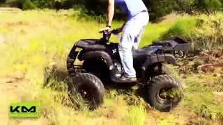 3. Tao Tao Rhino 250cc Utility ATV