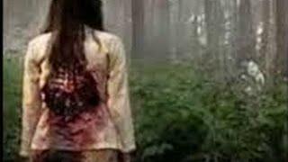 Video Ki Pranalewu Lari Ketakutan Ada Sosok Siluman Harimau ~ Jejak Paranormal 2015 MP3, 3GP, MP4, WEBM, AVI, FLV Agustus 2018