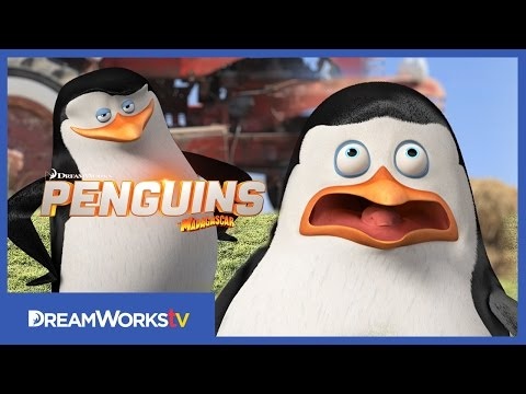 Penguins of Madagascar (Viral Video 'Nerves of Steel')