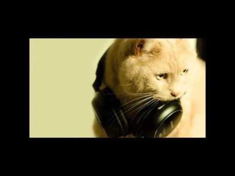 Musikk Feat. John Rock-Summer Lovin (Original Radio Edit)