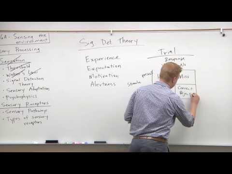 2015 MCAT Psychology (5) - Signal Detection Theory