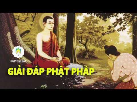 Video Kể Truyện Đêm - Giải Đáp Phật Pháp - Những Lời Phật Dạy - MP3 Phật Giáo download in MP3, 3GP, MP4, WEBM, AVI, FLV January 2017