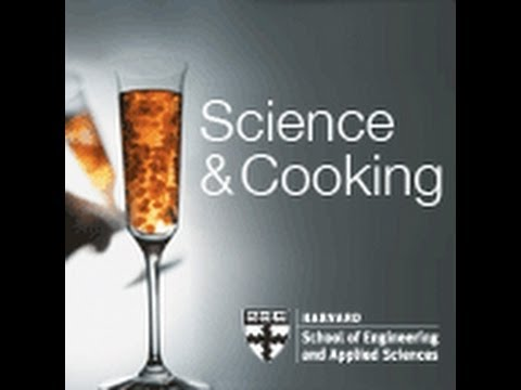 Science and cooking: Harvard lecture: Molecular Differences Between Production Methods   Lecture 10 (2011)