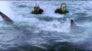 Nonton Zoe Naylor    The Reef  Compilation   Part 3 Film Subtitle Indonesia Streaming Movie Download
