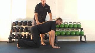 【体幹トレーニング】体幹の機能性・安定性を高めながら引き締めるトレーニング[バードドッグ]