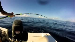 Jupiter (FL) United States  city images : Jupiter Florida offshore fishing