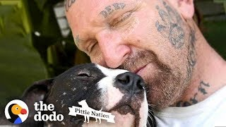 Guy Fills His Home With Pitties No One Wants  | The Dodo Pittie Nation by The Dodo