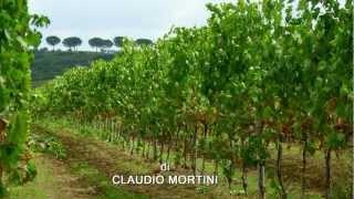 Torgiano Italy  City new picture : UMBRIA - TORGIANO Borgo Medievale - Medieval Village [HD 1080p]