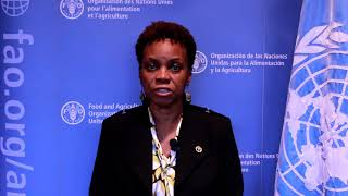 Interview with Lystra Fletcher - FAO Subregional Coordinator for the Caribbean tells us about what is planned for the next biennium.Subscribe! http://www.youtube.com/subscription_center?add_user=FAOoftheUNFollow #UNFAO on social media!* Facebook - https://www.facebook.com/UNFAO * Google+ - https://plus.google.com/+UNFAO * Instagram - https://instagram.com/unfao/ * LinkedIn - https://www.linkedin.com/company/fao * Twitter - http://www.twitter.com/faoknowledge © FAO: http://www.fao.org