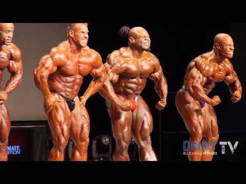 Grupo 4 de 4 Mr. Olympia 2013
