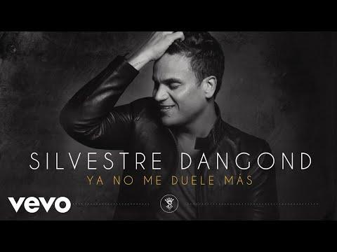Ya No Me Duele M�s (cover Audio)