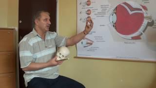 Leczenie i poprawę wzroku metodą - Aliaksandr Haretski.