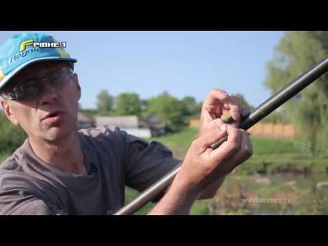 Риболовля на ставку за допомогою штекера.Частина 1 [ВІДЕО]