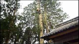Nanto Japan  City pictures : ARBORICULTURE -NANTO SHINRIN MAINTENANCE(JAPAN)