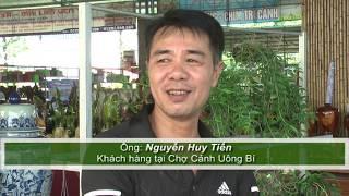 Chợ cảnh Uông Bí: Thêm nhiều mặt hàng phong phú và hấp dẫn