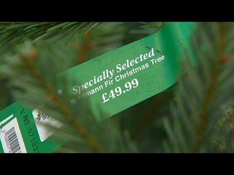 Φθηνότερα, φέτος, τα εισαγόμενα αληθινά χριστουγεννιάτικα δέντρα! – economy