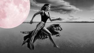 Delta Goodrem - Feline
