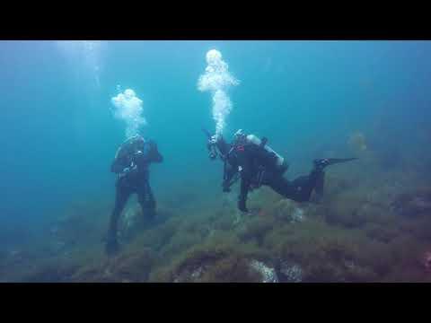 ADP Lifeguard Anacapa Pelican Bay 1112017