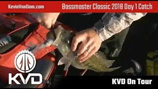 KVD - LIVE catch - Bassmaster Classic 2018 day 1, morning